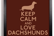 Owned by Dachshunds..three of them. ;)