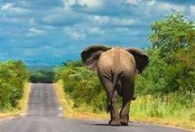 Bijzonder Afrika / Bijzondere plekken in exotisch Afrika