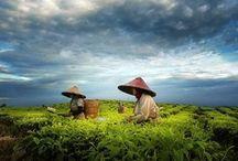 Bijzonder Azië / Bijzondere plekken in Azië