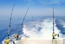 Hooked on Fishing / Fishing Charters and the best fishing spots on the Gulf Coast