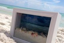 Beach Crafts for Kids and You!