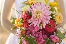 Flowers / by jill gordon celebrate