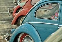 We Love Classic Beetles / Classic Volkswagen Beetles