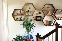 Honeycomb & Hexagon / A shape in creation with beautiful purpose & possibilities.