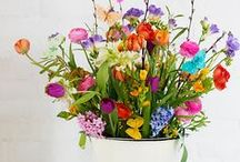 Flowers / Beautiful flower inspiration