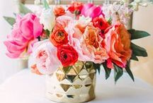 Steals & Deals / Looking for great deals for your upcoming wedding or event?  Look no further then Afloral.com.  Find high-quality silk flowers, containers and decorations for your DIY floral arrangements and designs. / by Afloral Wedding Flowers and Decorations