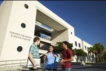 College for Design and Social Inquiry  / There are five academic units in the College for Design and Social Inquiry. The School of Architecture, the School of Public Administration, the School of Urban and Regional Planning, the School of Criminology and Criminal Justice and the School of Social Work . Programs from these schools are offered across all FAU campuses.