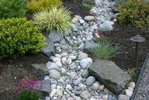 Rain gardens, rock beds