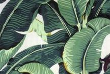 Tropical Patterns / Jungle design rugs