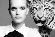 Lust & Leopard