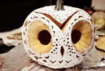Fall / Give your fall decorations an FAU theme!