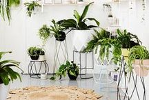 Go GREEN interiors / Green shades in interior design and decor. Green living rooms, greenery, florals, plants, green kitchens. Go green!
