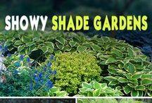 Bloom/Green-Way-Artsy-Do / blossoms,greens,decoration
