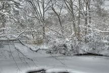 Winter Scenery- Life Outside / scenery,life,photo's,outdor