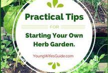 Garden:Herbs,Recipe,Veggies / Herb,home grown veg./recipes