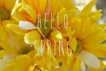Spring Inspiration / Who doesn't love spring? With all the fresh flowers and produce, we think it is the perfect time of year.