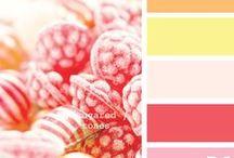 Colours / by Anne Vesco