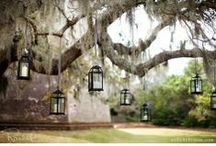 Grand Old South