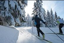 Nordic skiing // Ski nordique