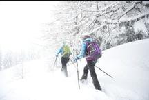 Snowshoeing // Raquettes