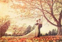 My Dream Wedding / Coming soon: October 2015. :) / by Kacey Wiebenga