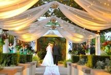 Wedding Ideas / by Vilma Ortecho-Franco
