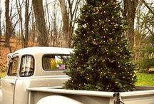 Chic Country Christmas