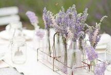 Lavender Love / lavender design ideas and inspiration