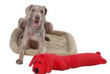 Fun for Furry Friends / Gordmans has plenty for your pet including chew toys, dog beds, cat condos, and so much more!