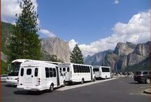Tours & Transportation / Options for touring and transportation around the Yosemite area.