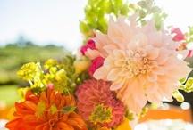 Flower Arrangements / by Elizabeth Henderson