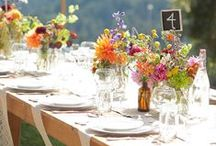 Table Scape / by Linette Terry