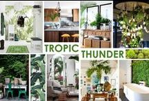 KKDL TRENDWATCH 2015: TROPIC THUNDER / Nature and it's benefits have surely come to the forefront of our healthy lifestyles--juicing, Vitamixing and eating organically--and now it is reaching into our interior spaces. Elements of the rainforest and it's botanics not only nourish us physically but mentally, too. Green spaces have been incorporated into dense urban environments and as simple backyard garden living as well. / by Kerrie Kelly Design Lab
