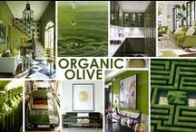KKDL TRENDWATCH 2015: ORGANIC OLIVE / The shade of olive green is warm and organic for almost any other color you pair with it. Use it as a neutral to paint an entire space or just as a small accent piece. / by Kerrie Kelly Design Lab