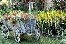 Garden ~ Ideas / by Jeana Green