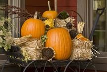 Holiday~ Fall, Halloween and Turkey Day / by Jeana Green