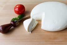 cheesemaking / by Julie Foley