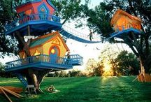 Home- Tree house/kid fun / Out door fun the kids and big kids, tree house play grounds and so on.