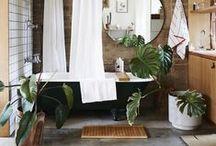gourmet bathing / Bathroom, spaces
