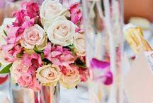 Wedding / by Whitney Corn