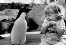 animals make people smile / by Amy Scheiner