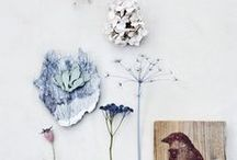 INSPIRATION- natural/earthy / Natural, earthy and the beauty of nature