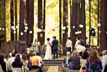 Wedding Dreams / by Megan Crow