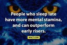 Sleep n me...