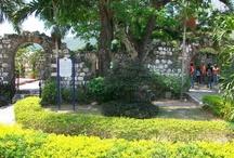 Photography / by UWI TV