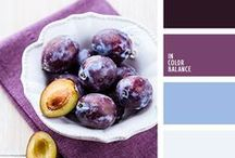 MOD // Color Cravings / A covet worthy collection of color