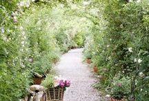 Green - Garden