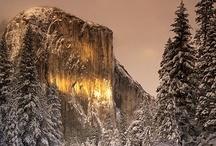 Yosemite National Park / Celebrating the amazing beauty of Yosemite.