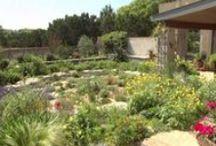 Lose the lawn / Creative garden design ideas for dumping the grass!