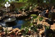 Water in the garden / Ponds, fountains, streams, waterfalls from Central Texas Gardener